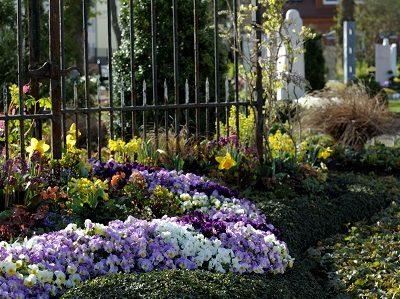 Frühlingsstimmung auf dem Friedhof