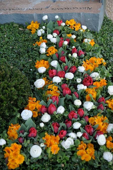Primeln gehören in Kombination mit Tulpen und Ranunkeln zu den beliebten Frühjahrsboten auf dem Friedhof. Foto: GdF, Bonn