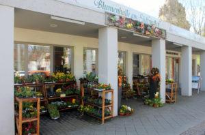 Blumenhalle Unternehmensansicht
