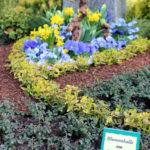 Grabgestaltung Referenzen der Blumenhalle am Südfriedhof