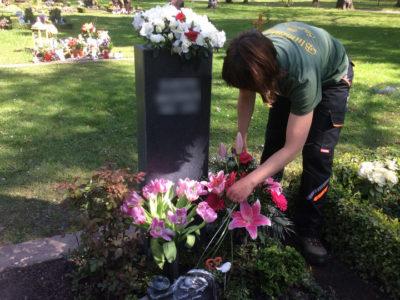 Das Ausputzen der Blumen