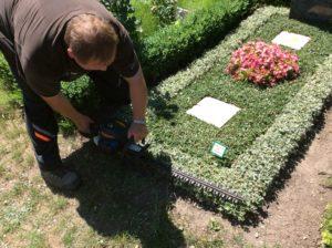 Eine Motorheckenschere als Arbeitsgerät in der Grabpflege