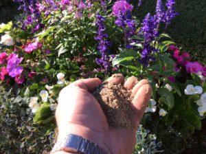 Ein Blumenbeet mit einer Hand voll organischer Dünger