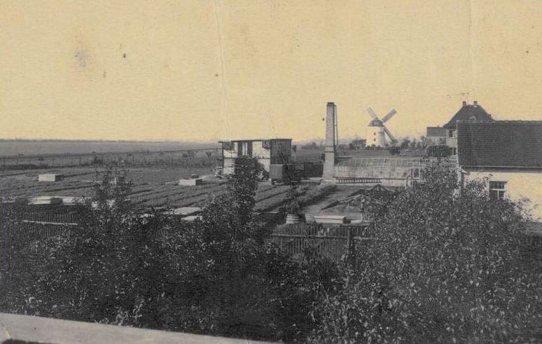 Gärtnerei um 1928 damals in Knauthain