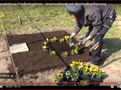 Video – Friedhofsgärtner Zwischenprüfung / Grabgestaltung