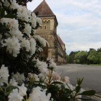 Trauerhallenkomplex und weiß blühende Alpenrosen