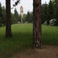 Bäume im Vordergrund - Krematorium im Hintergrund