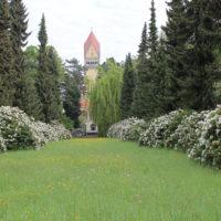 Weißer Rhododendron vor dem Krematorium