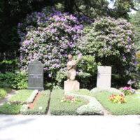 Gräber eingerahmt von Rhododendron