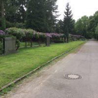 Historischer Gang aus Rhododendron