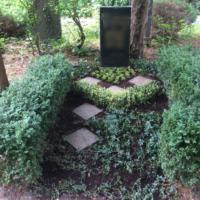 Grabpflege Leipzig - nach Buchsbaumschnitt und Einpflanzung