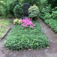 GrabpflegeLeipzig Beispiele - vor der Grabfpflege