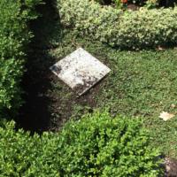Grabpflege Leipzig - Das eingebrochene Grab