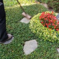 Grabpflege Steinsäuberung