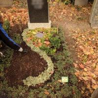 Blumenhalle am Südfriedhof - Winterabdeckung