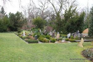 Einheitlich angelegte Grabfelder - Nordfriedhof