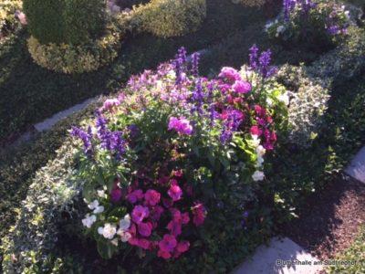 Die Sommerbepflanzung