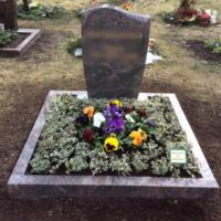 Friedhof Gohlis