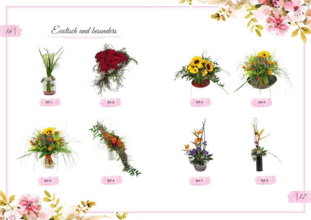 Exotisch und besonders Floristik